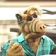 Alf1996